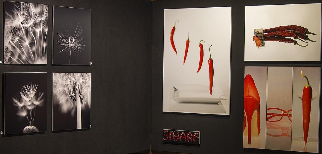 42. Herrieder Fotoausstellung in der Rathausgalerie