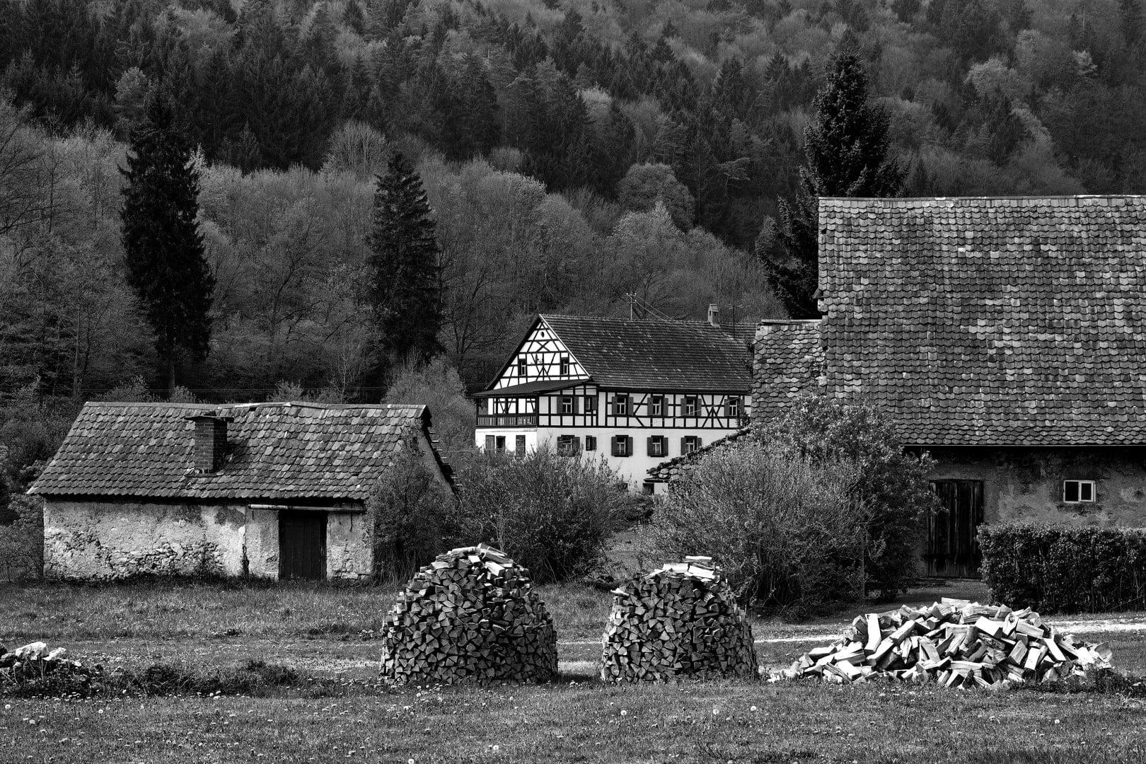 Die Mühle - von Reinhardt Schmidt