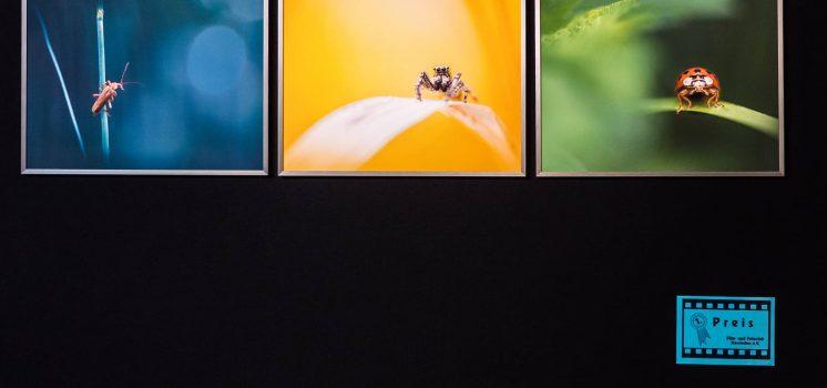 46. Herrieder Fotoaustellung – Eröffnung und Preisverleihung